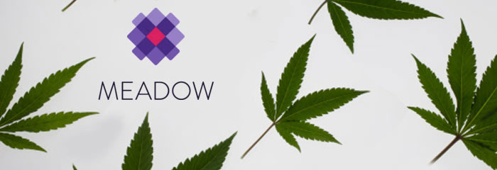 Meadow Promo Code: Get $10 off and read our Meadow Weed Review! @GetMeadow