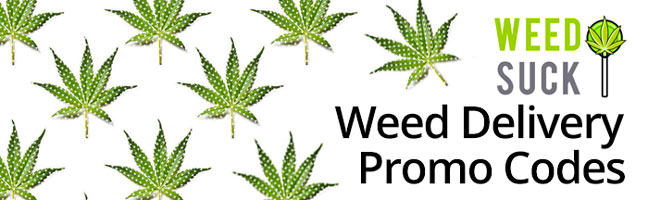 Weed Delivery Promo Codes: WeedSuck has them all!