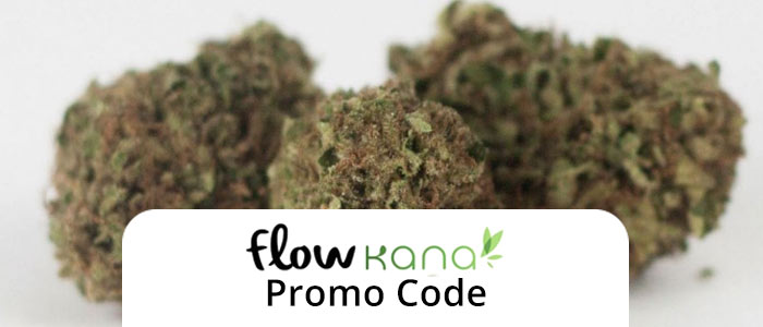 Flow Kana Promo Code: Use our Flow Kana Promo Code and read our review!