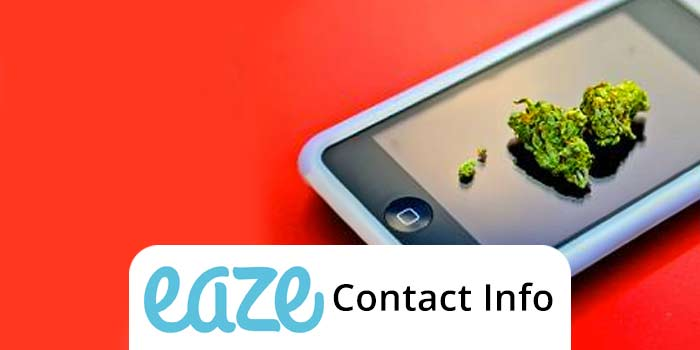 Check out the Top 5 Ways to contact Eaze Up