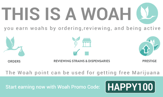 Use WoahStork Promo Code HAPPY100 to get 100Woahs