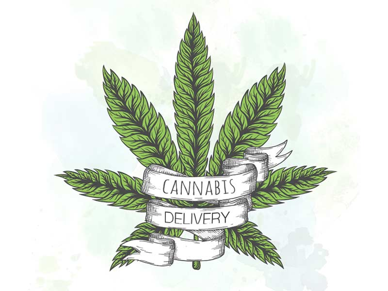 Read out ultimate guide to weed delivery to see what its all about!