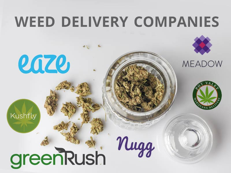 Read our Ultimate guide to weed delivery and see which companies delivery marijuana.