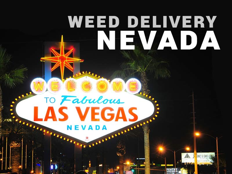 Read our article to find out about Weed Delivery Nevada and weed delivery los vegas!