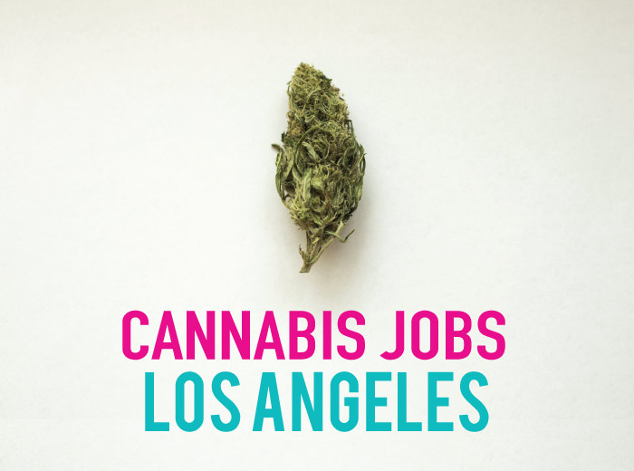 Cannabis Jobs Los Angeles: Earn as a brand ambassador (+ other Marijuana Jobs in California