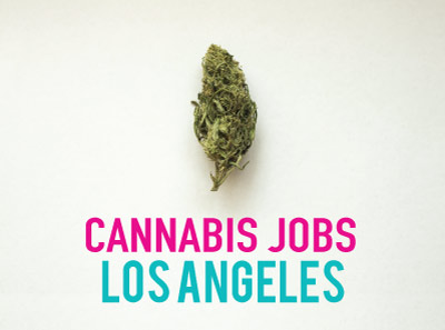 Cannabis Jobs Los Angeles: Earn as a brand ambassador (+ other Marijuana Jobs in Los Angeles)