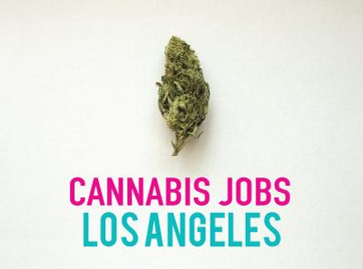 Cannabis Jobs Los Angeles: Earn as a brand ambassador (+ other Marijuana Jobs in Los Angeles)