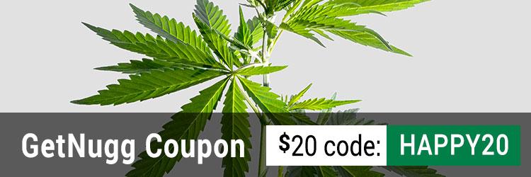 GetNugg Promo Code: Enter HAPPY20 for a $20 discount!
